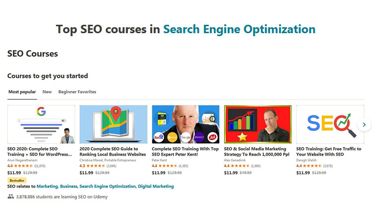 10+ Best Udemy Search Engine Optimization Courses with Certificate of Completion!